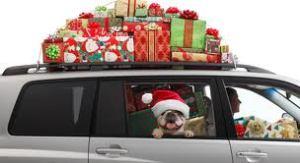 holiday car